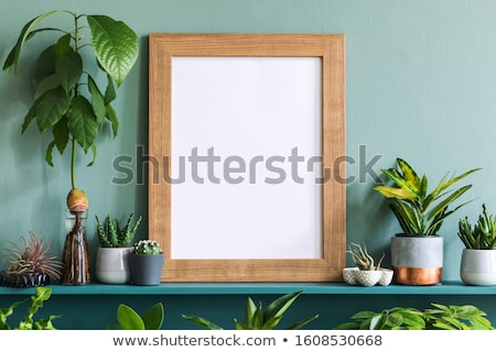 Photo Frame and Cactus in Pot on Shelf, Decoration Stock photo © robuart