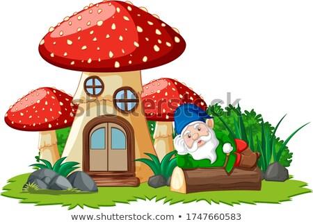 Gnom obok grzyby domu biały ilustracja Zdjęcia stock © bluering