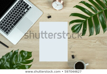 Laptop with leaves on white background Stock photo © m_pavlov