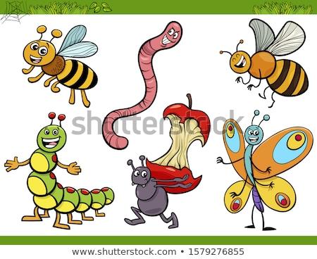 cartoon character worm stock photo © rastudio