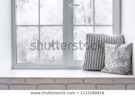 frost winter window stock photo © srnr