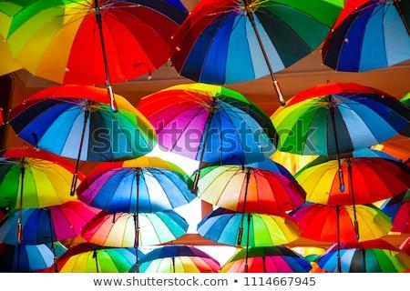 Rainbow · oggetti · bandiera · isolato · bianco - foto d'archivio © Dizski
