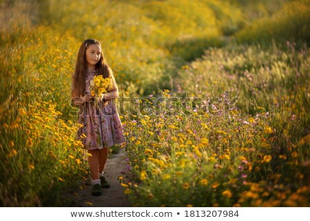 mulher · flores · amarelas · campo · conteúdo · vestido · branco - foto stock © michey