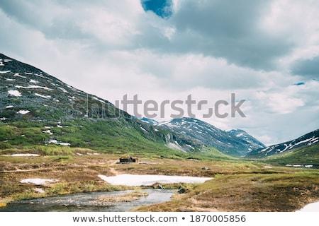 ép tájkép Norvégia Európa fák hegyek Stock fotó © gewoldi