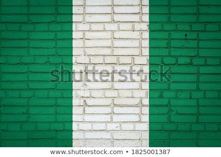 Bayrak Nijerya tuğla duvar boyalı grunge doku Stok fotoğraf © creisinger