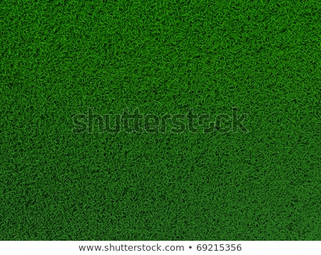 3 dimensional football field pitch stock photo © experimental