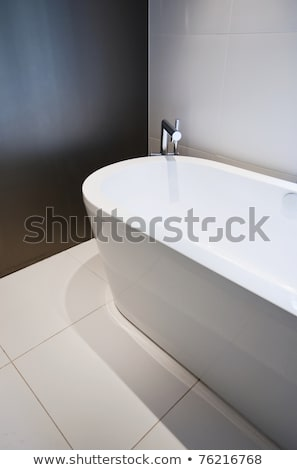 modern bath and taps with shower attatchment in contemporary in stock photo © kjpargeter