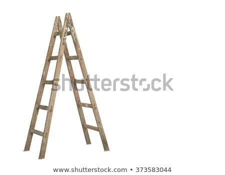 Wooden ladder, vertical isolated stepladder Stock photo © ozaiachin