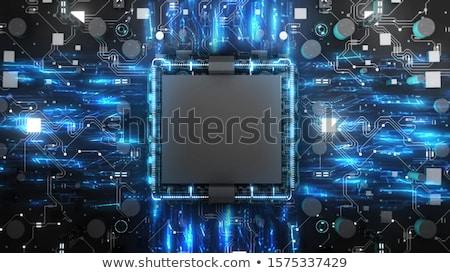 rovar · számítógép · chip · háló · fehér · ír - stock fotó © nasirkhan