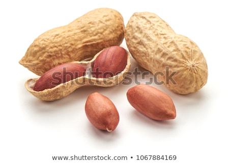 Dried  peanuts Stock photo © Masha