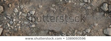 Estrada de terra sem costura textura grama abstrato fundo Foto stock © tashatuvango