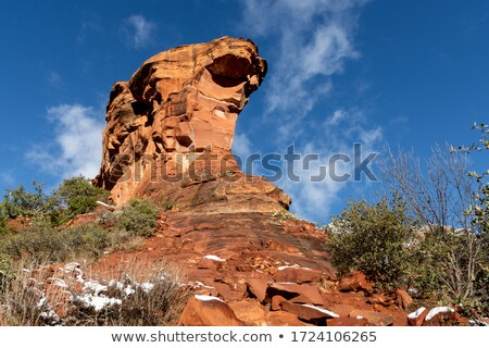 The famous landscape near Sedona Stock photo © vwalakte