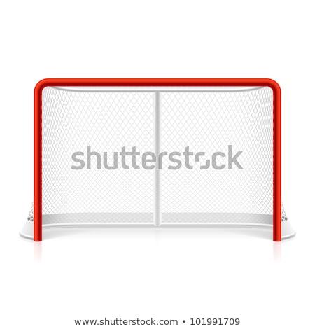 Jégkorong célok gyeplabda mező sport gól Stock fotó © jeayesy