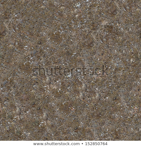 seamless texture of soil post apocalyptic period stock photo © tashatuvango