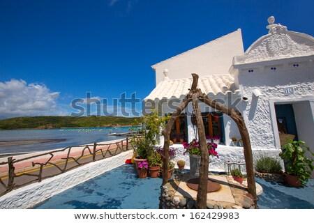Menorca Es Grau white house flower pots detail in Balearic Stock photo © lunamarina