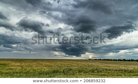 landscape with dark clouds and heavy rain Stock photo © meinzahn