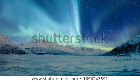 Stock photo: Northern Lights (Aurora borealis) over snowscape.