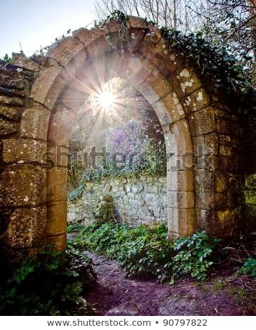 puerta · sol · apertura · jardín · escaleras · transmisión - foto stock © kimmit