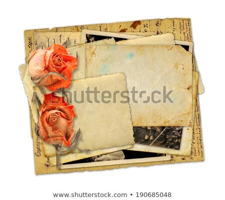 antieke · rozen · oude · foto's · tabel · bloem - stockfoto © neirfy