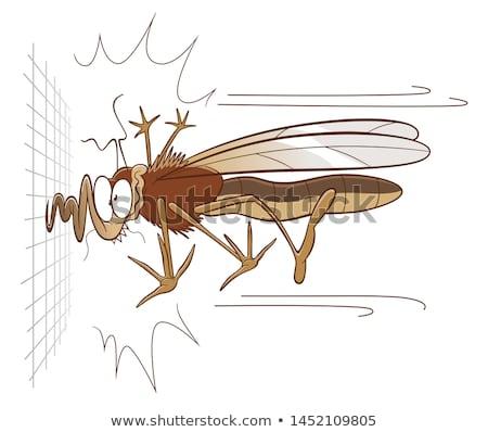 смешные иллюстрация комаров кровь фон черный Сток-фото © JackyBrown