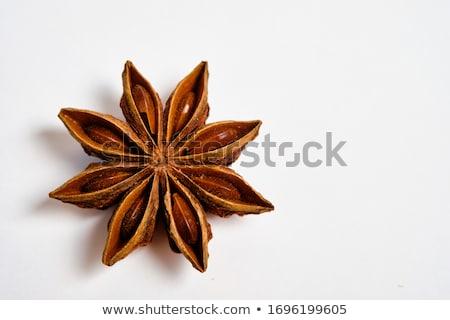 anise star spice isolated stock photo © jonnysek