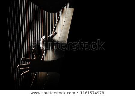 Harpe classique instrument de musique blanche bois sonores Photo stock © ddvs71