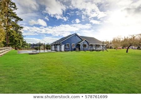 дома трава игрушку Постоянный тень здании Сток-фото © Pruser