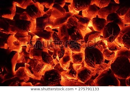Lenha aquecimento para cima grelha fogo fundo Foto stock © Valeriy