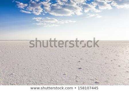соль озеро пустыне воды природы черный Сток-фото © lkpro