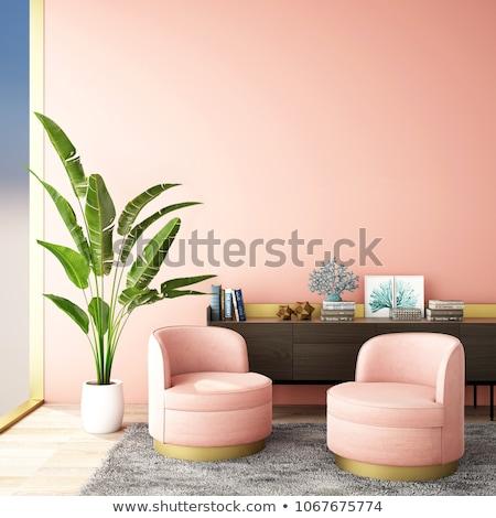 roze · leder · sofa · geïsoleerd · fauteuil · echt - stockfoto © ozaiachin