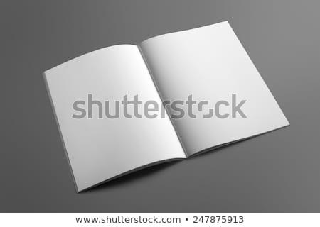 üres · papír · brosúra · árnyékok · izolált · fehér · felfelé - stock fotó © pozitivo