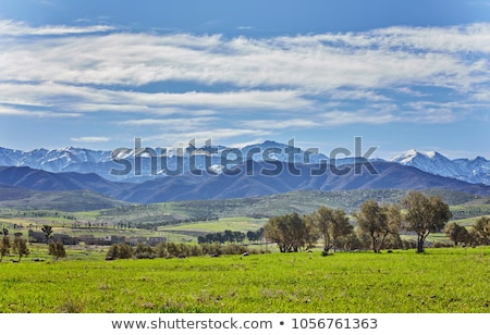 Landschap velden atlas bergen blauwe hemel boom Stockfoto © meinzahn
