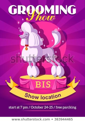 hond · show · banner · sjabloon · informatie · cute - stockfoto © natalya_zimina