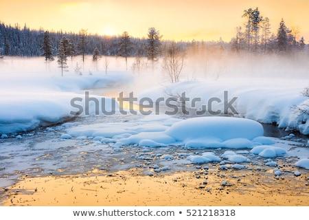 Blizzard winter landscape at frozen lake Stock photo © Juhku