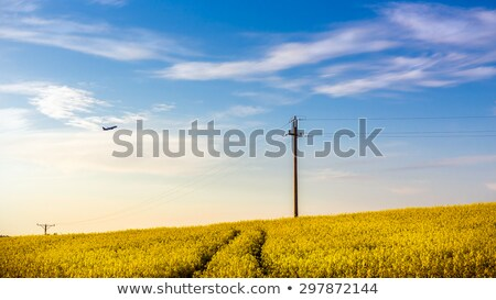 Scene with airplane flying over farmlands Stock photo © bluering