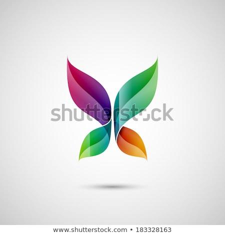 pássaro · asa · pomba · logotipo · modelo · casamento - foto stock © cidepix