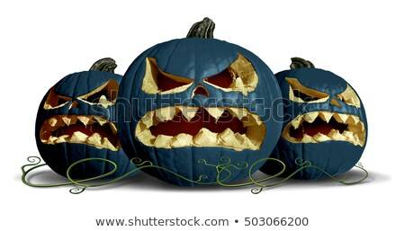 goth pumpkin halloween group stock photo © lightsource