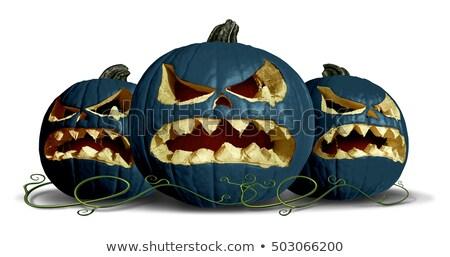 Goth sütőtök halloween csoport fekete fallabda Stock fotó © Lightsource