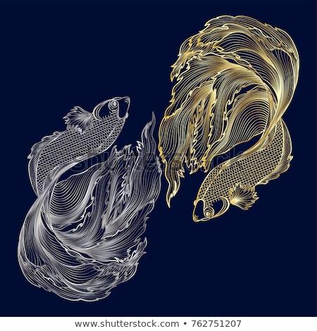Yin and Yang Gold And Silver Stock photo © Bigalbaloo