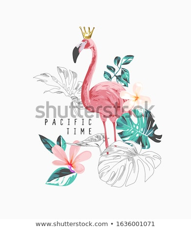 A beautiful flamingo Stock photo © bluering