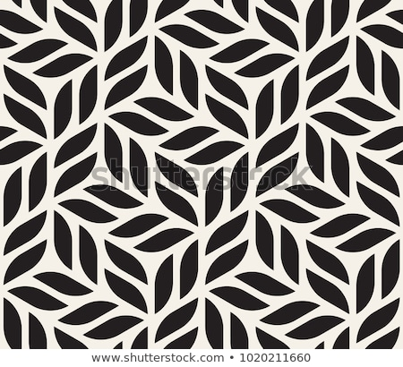 vector seamless black and white hexagon lines pattern stock photo © creatorsclub