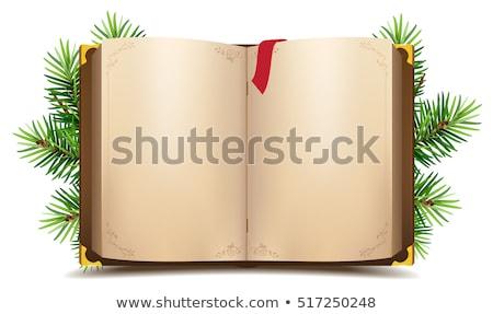 Açık kitap kırmızı imi yeşil Noel Stok fotoğraf © orensila