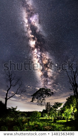 Stock photo: Landscape under the Milky way.