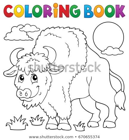 Coloring book bison theme 1 Stock photo © clairev