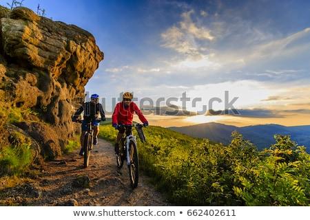 kerékpáros · lovaglás · bicikli · gyönyörű · nyár · erdő - stock fotó © nobilior
