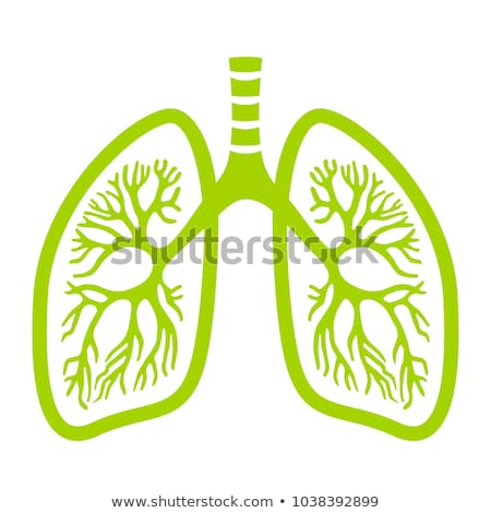 silhouette icon of the human lungs  Stock photo © Olena