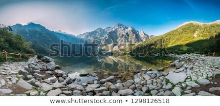 hegyek · panorámakép · kilátás - stock fotó © Vectorex