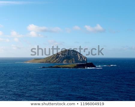 Tavşan ada Hawaii doğu Stok fotoğraf © kraskoff