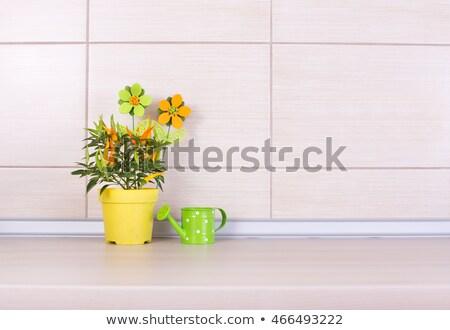 çalı · bitkiler · bitki · sığ · doku - stok fotoğraf © virgin
