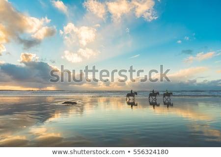 Three women riding horses on beach Stock photo © IS2